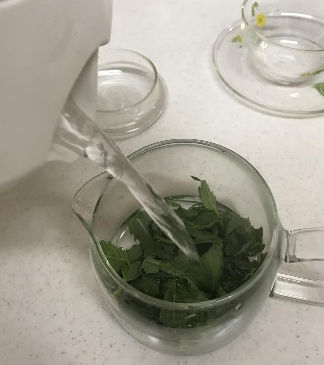 f:id:my-milk-tea:20210914162558j:plain