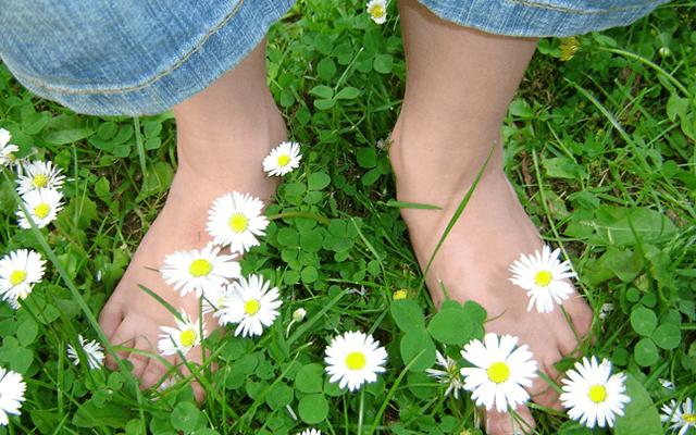 草の上でアーシング