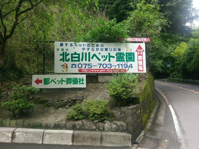 f:id:myadomachi:20160811172937j:plain
