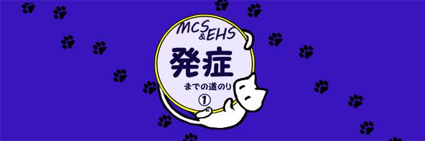 IC-MCS001化学物質過敏症 発症までの道のり01