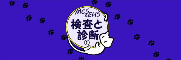 IC003MCS006化学物質過敏症 検査と診断01