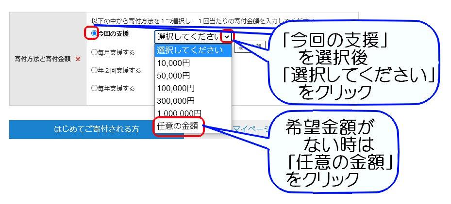 E028宮崎徹教授による猫の腎臓病治療薬研究への寄付03