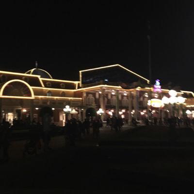夜のディズニーランドも楽しかった