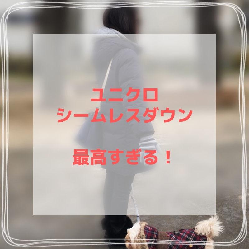f:id:mykotoba:20190114010817j:plain