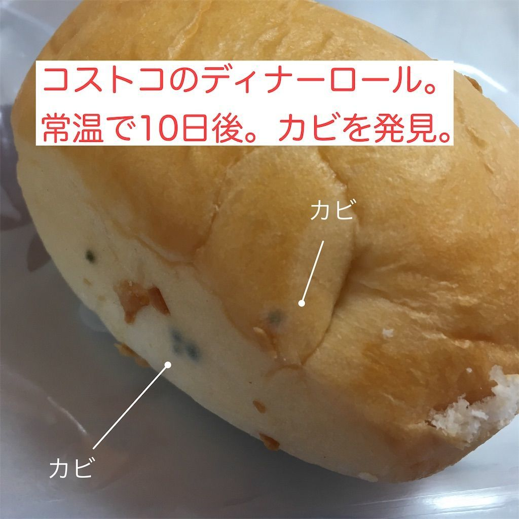 f:id:mykotoba:20190413105431j:image