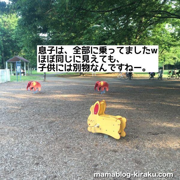 砧公園の遊具