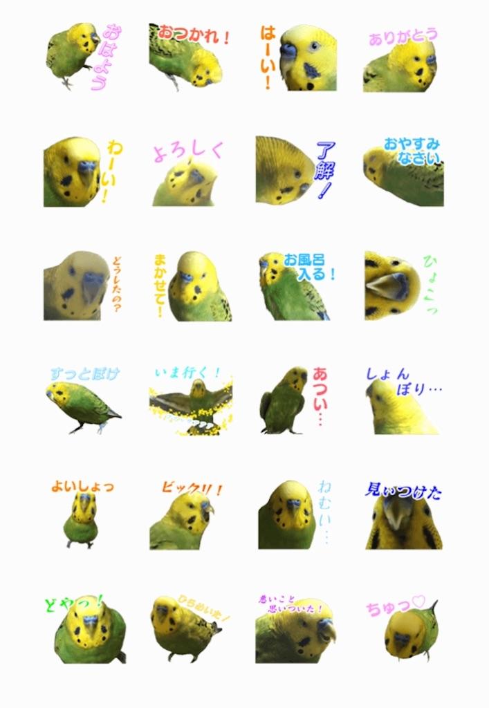 f:id:myo-ban:20200220210842j:image:w300