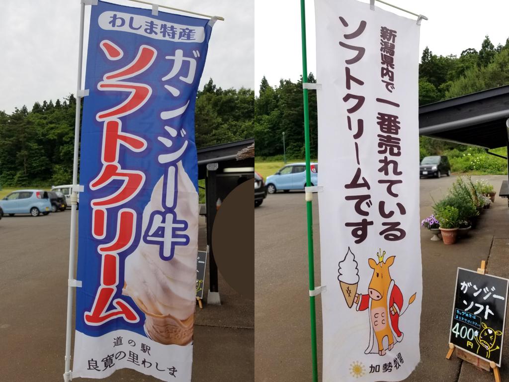 f:id:myoko-joetsu-diary:20170627111414j:plain