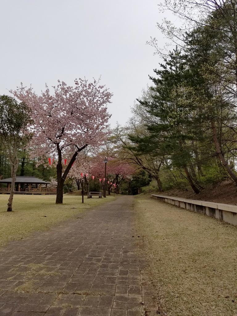 f:id:myoko-joetsu-diary:20180421125414j:plain