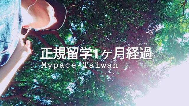 f:id:mypace-chinese:20181121145050j:image