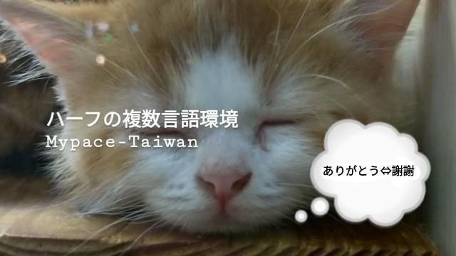 f:id:mypace-chinese:20181126183336j:image