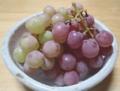 伊賀乙女という名の葡萄