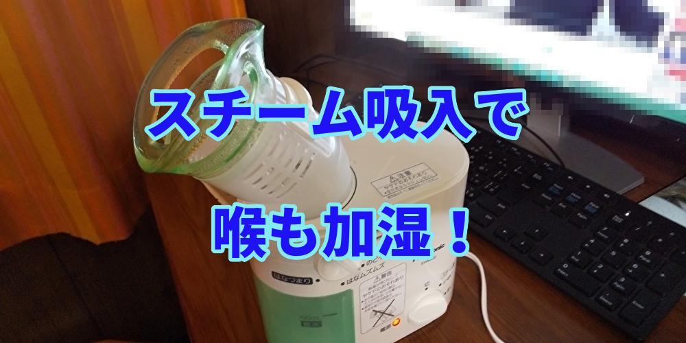 f:id:myself-shizen100:20201117231616j:plain