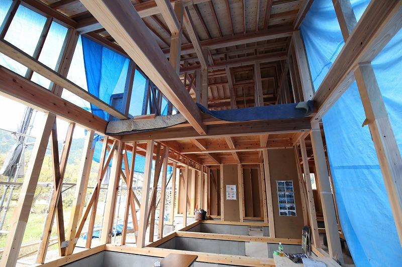 合板を一切使用せず、広々とした構造が特徴の1階部分