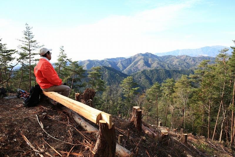 伐採した木で作成したベンチでたそがれる人