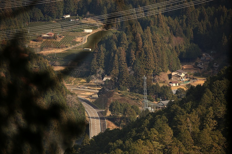 木々の隙間から明ケ島地区が見える