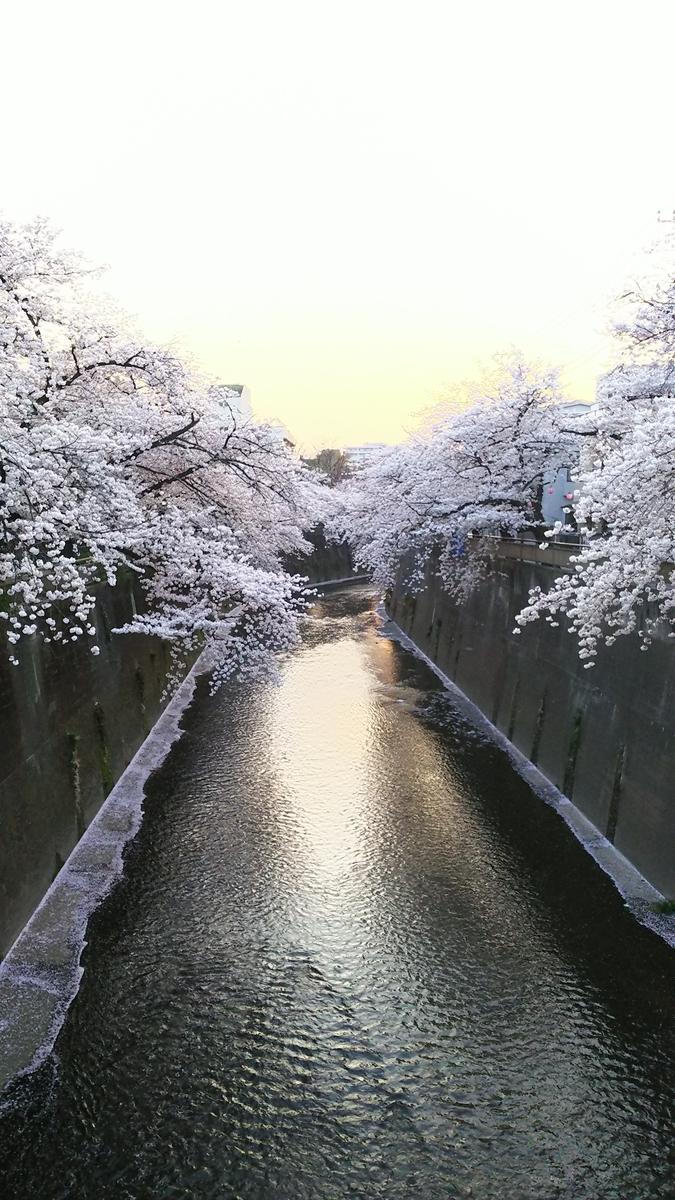 f:id:myuhikaru:20190331154554j:plain