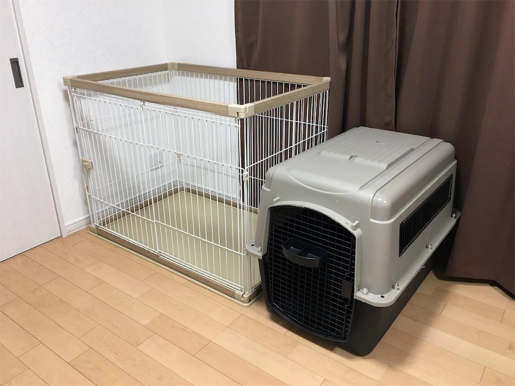 f:id:n-dogs:20190912105347j:image
