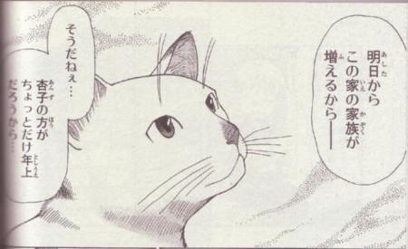 f:id:n-kashima:20100920000231j:image