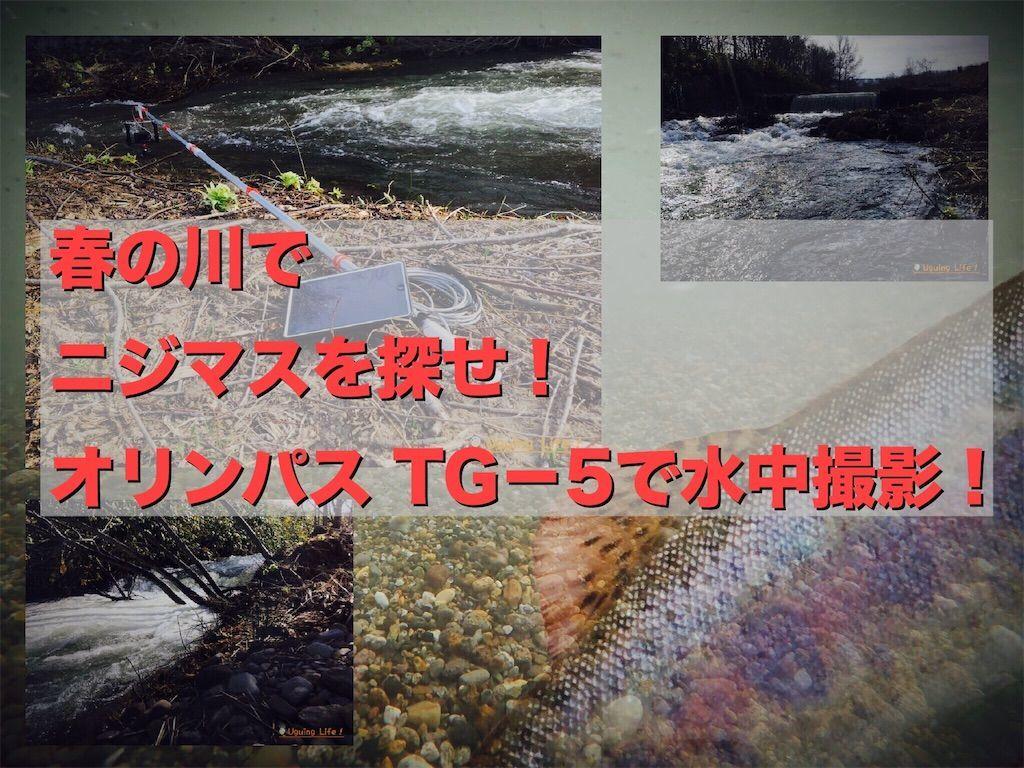 f:id:n-m-c-9311:20190502151734j:image