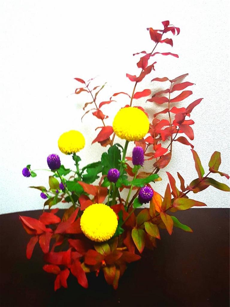 f:id:n-makimaki:20181107210227j:image