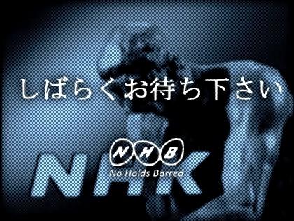 f:id:n-shikata:20070203120018j:plain