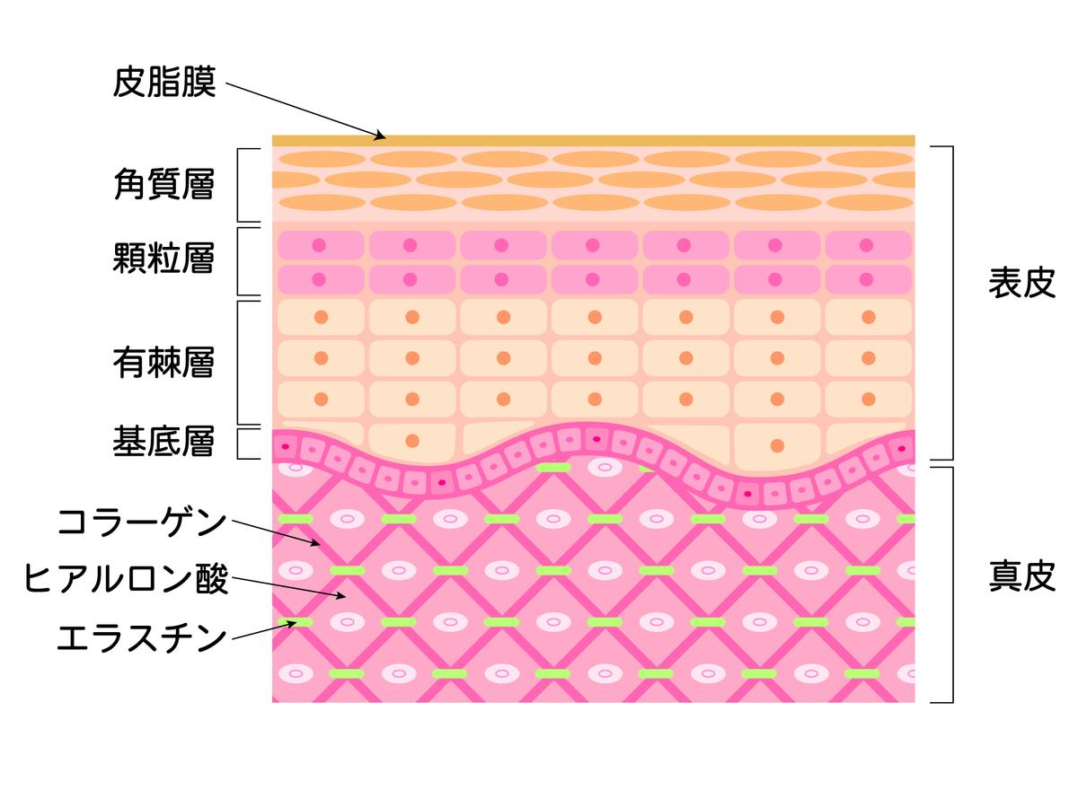 f:id:n-yamaguchi469:20200308172929j:plain