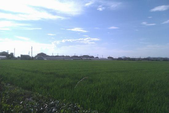 f:id:n-yuji:20130717172818j:image