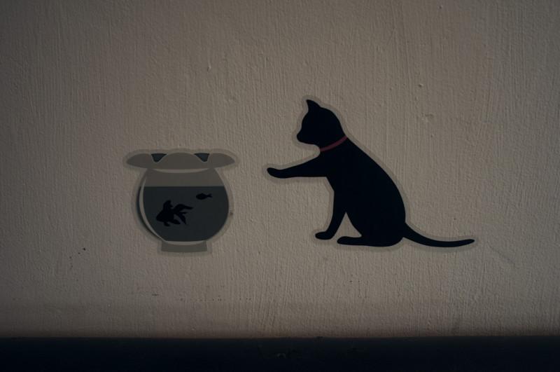 [壁][猫]