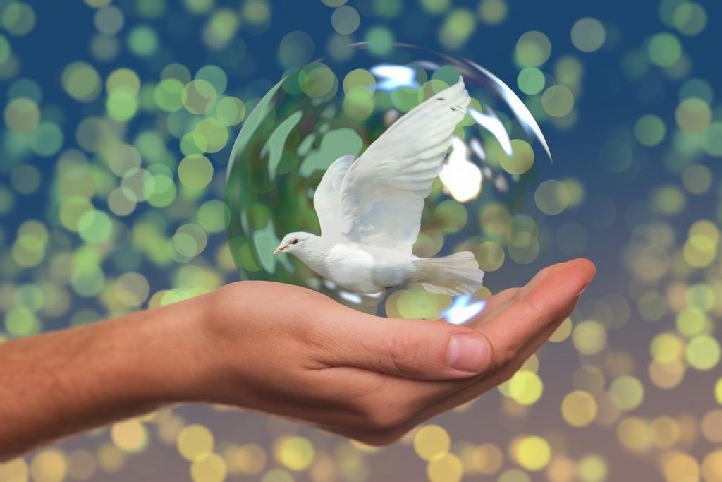 ハトは平和の象徴