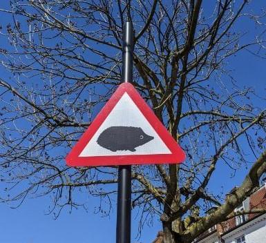 イギリスハリネズミ注意の標識:plain
