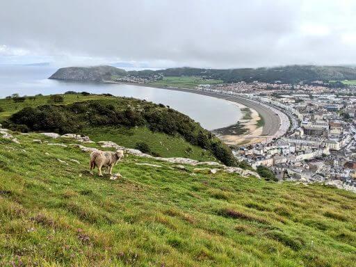 北ウェールズ観光・スランディッドノ 本物のアリスが休暇を過ごした街:plain