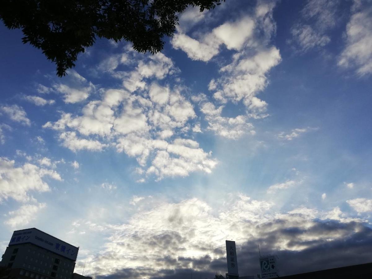 f:id:na_Tsuki:20210223220052j:plain