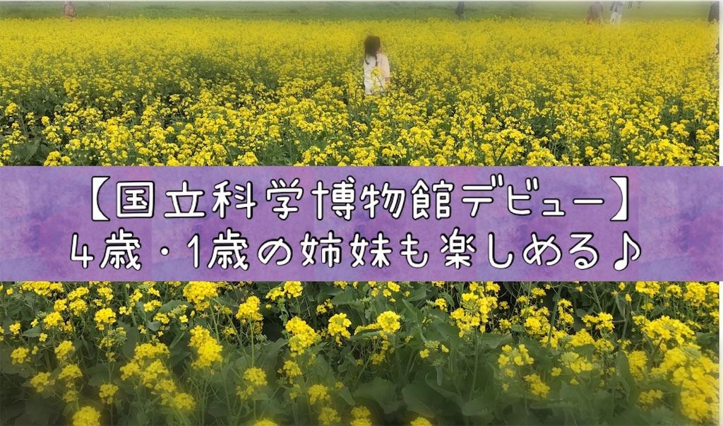 f:id:na_tanmama:20190221221344j:image