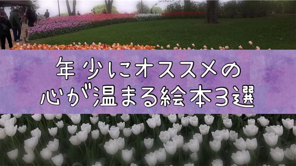 f:id:na_tanmama:20190225013008j:image