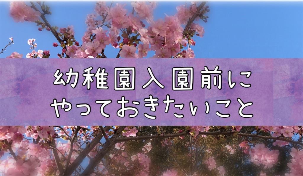 f:id:na_tanmama:20190228214915j:image