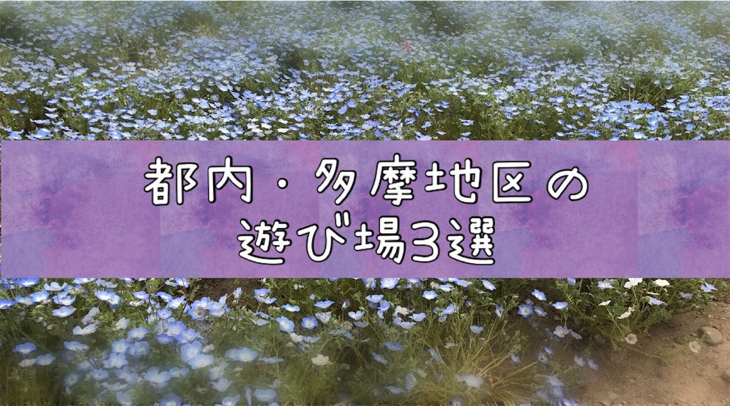 f:id:na_tanmama:20190308001142j:image