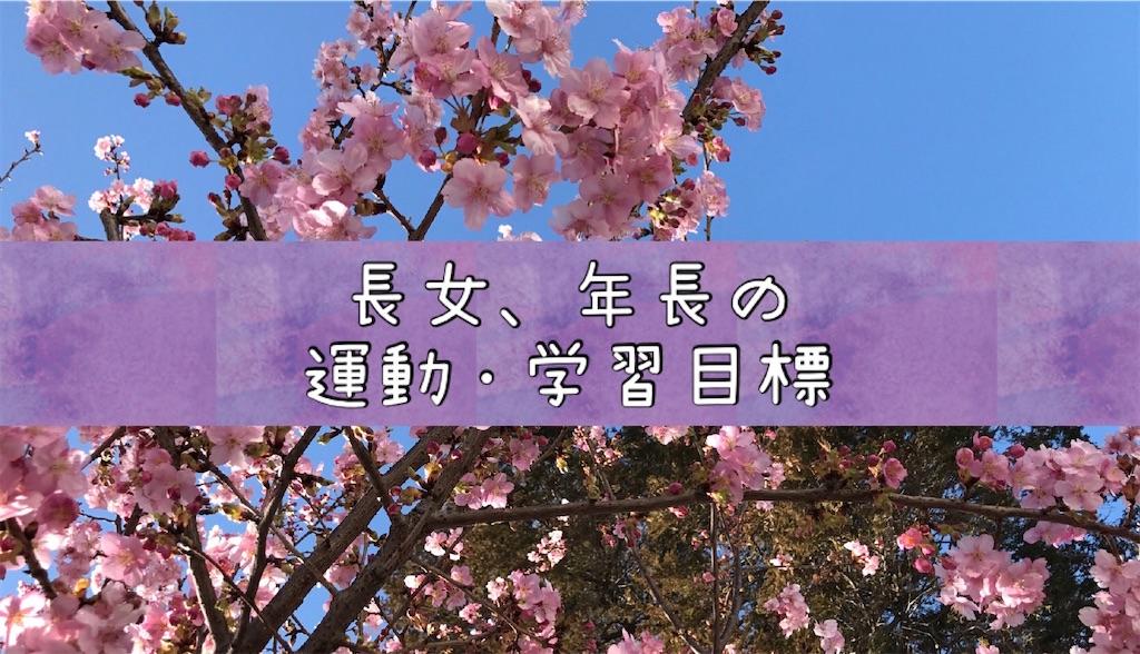 f:id:na_tanmama:20200413083210j:image