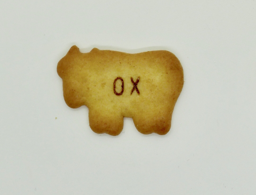 食べっ子動物のOX牛の画像