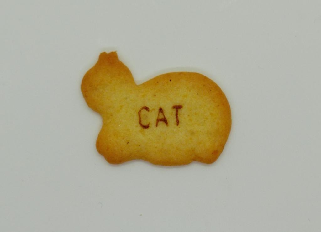 食べっ子動物のCAT猫の画像