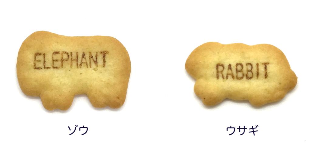 食べっ子動物のゾウとウサギの画像