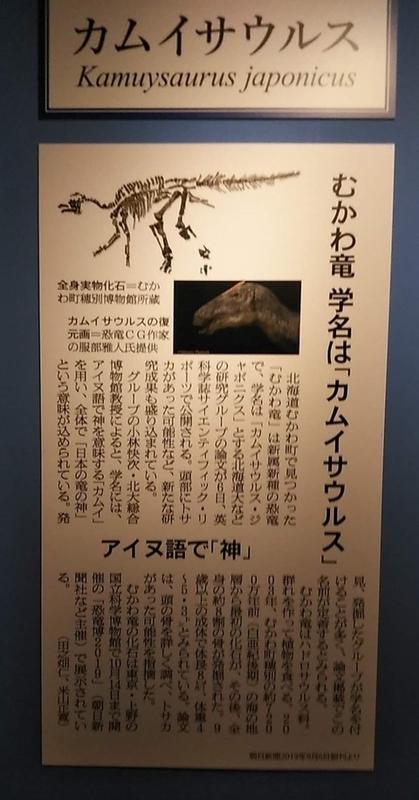 Kamuysaurus2
