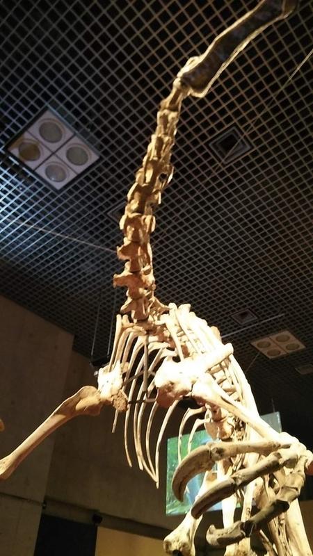 Deinocheirus2
