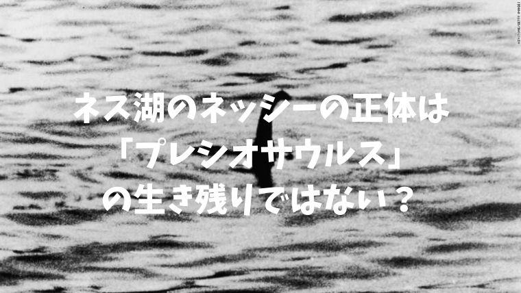 f:id:nabeyasukun:20201101172407j:plain