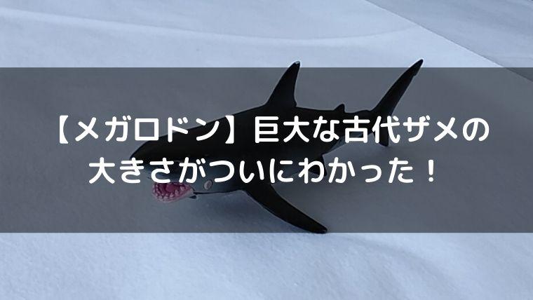 f:id:nabeyasukun:20201113234322j:plain