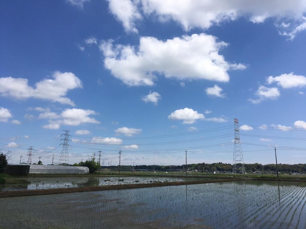 成田市の風景_ナビ男の競馬録