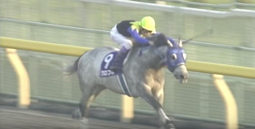 クロフネ_ナビ男の競馬録