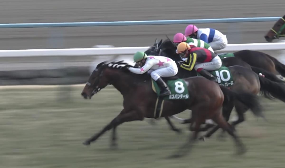 2018 阪神牝馬 ミスパンテール