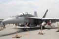 EA-18Gグラウラー(NF500)