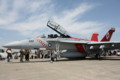 F/A-18Fスーパーホーネット(NF100)